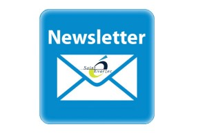 vignette newsletter