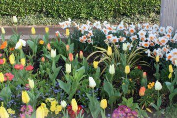 Jardins fleuris 2016