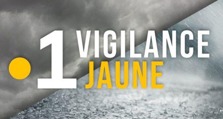 Vigilances